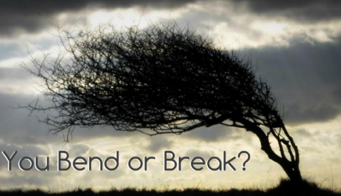 Resilience-bend-or-break-